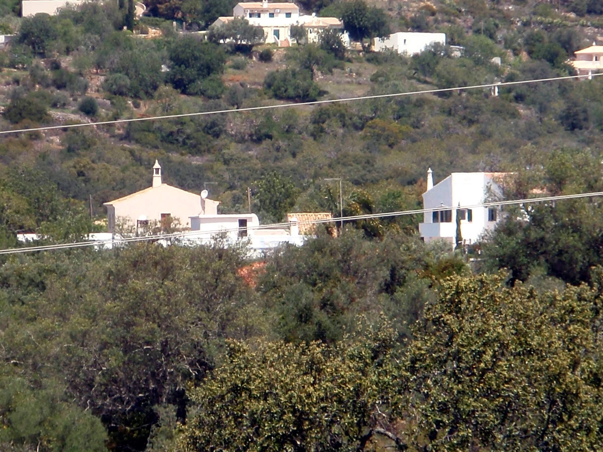 Ma maison dans la montagne - Des limaces dans ma maison ...